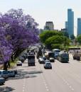 Buenos-Aires-Avenida-Alcorta-Recoleta-Private-Tour