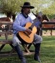 Ombú de Areco Guitarra